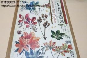 原色精密日本森林樹木図譜