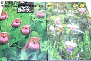 写真集日本の野生ラン・日本のラン巡遊・神田淳