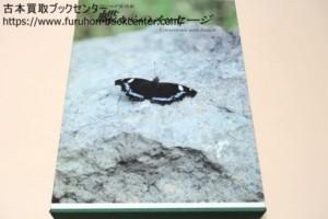 フィールド写真集・蝶からのメッセージ
